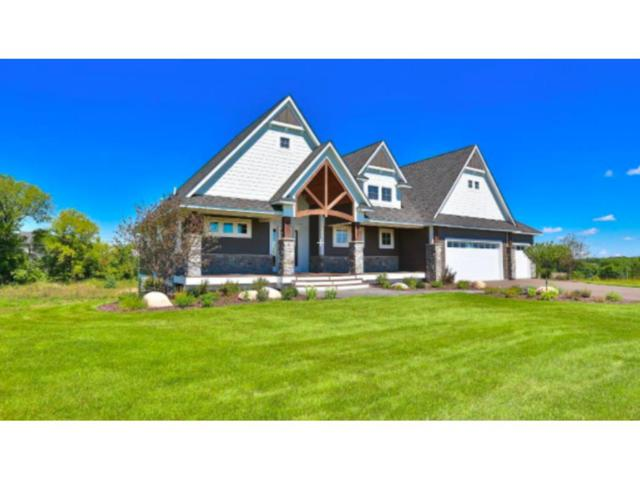 367 Meadow Valley Trail, Hudson, WI 54016 (#4907395) :: The Snyder Team