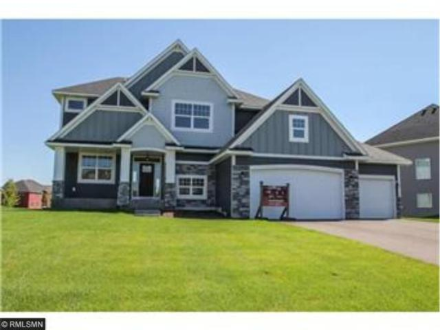 16613 Xeon Street NW, Andover, MN 55304 (#4907421) :: The Preferred Home Team