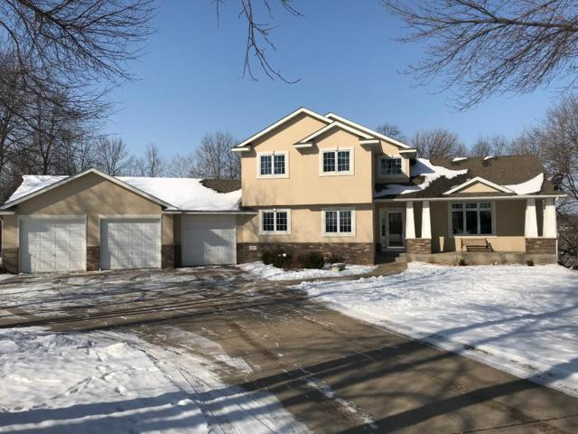 14291 Jodis Drive, Rogers, MN 55374 (#4907697) :: House Hunters Minnesota- Keller Williams Classic Realty NW