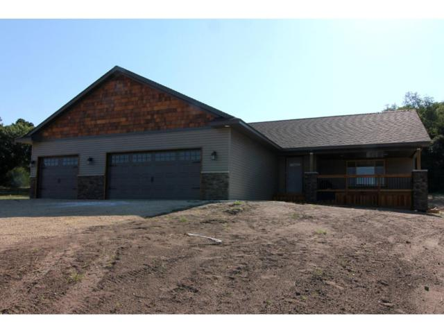 1151 134th Avenue, Richmond Twp, WI 54017 (#4907897) :: The Snyder Team