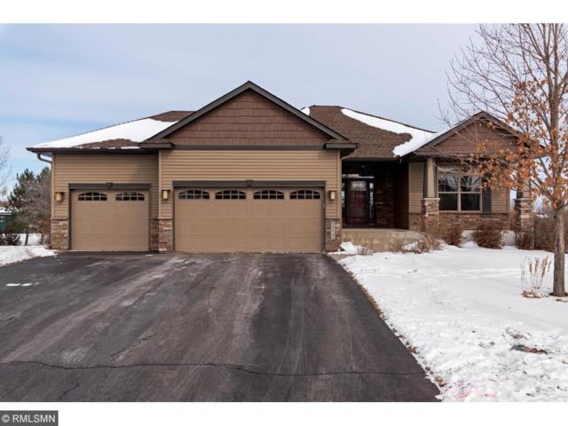 14822 77th Street NE, Otsego, MN 55330 (#4908220) :: House Hunters Minnesota- Keller Williams Classic Realty NW