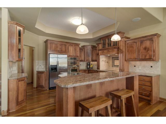 11062 Amen Circle NE, Blaine, MN 55449 (#4908471) :: The Preferred Home Team