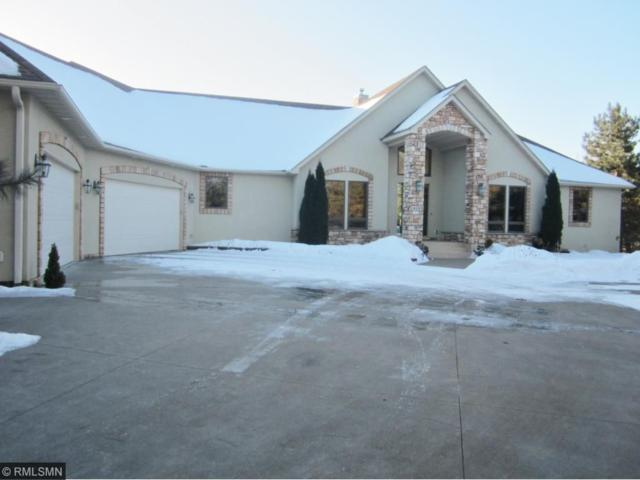 429 County Road A, Hudson, WI 54016 (#4908616) :: The Snyder Team