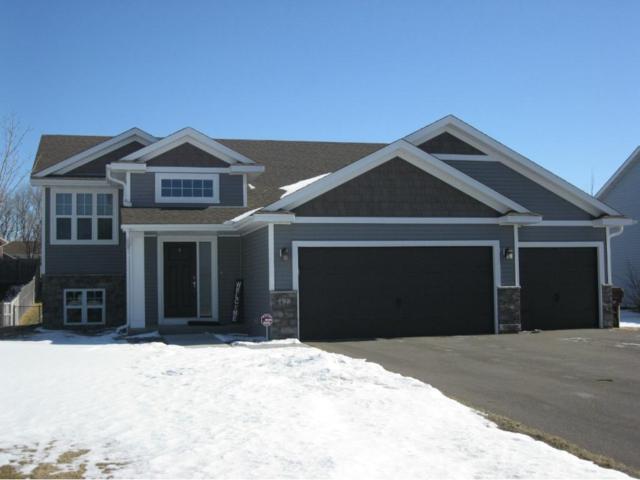 7422 Lander Avenue NE, Otsego, MN 55301 (#4908747) :: House Hunters Minnesota- Keller Williams Classic Realty NW