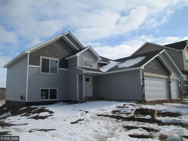 7442 Queens Avenue NE, Otsego, MN 55330 (#4908863) :: House Hunters Minnesota- Keller Williams Classic Realty NW
