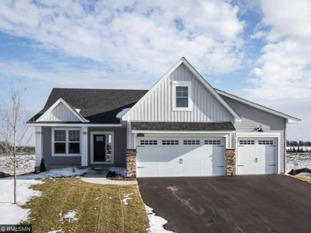 14090 Ailesbury Avenue, Rosemount, MN 55068 (#4908864) :: The Preferred Home Team