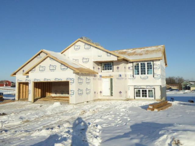 824 Hills Drive, Ellsworth, WI 54011 (#4909079) :: The Snyder Team