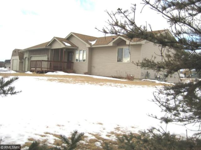 30274 145th Street NW, Princeton, MN 55371 (#4909261) :: The Snyder Team