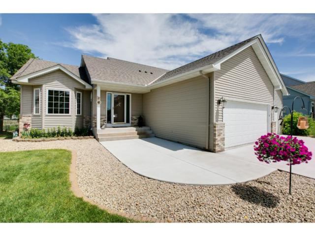 22596 128th Avenue N, Rogers, MN 55374 (#4909274) :: The Snyder Team
