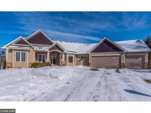 1357 Grace Drive, Eagan, MN 55123 (#4910238) :: Hergenrother Group