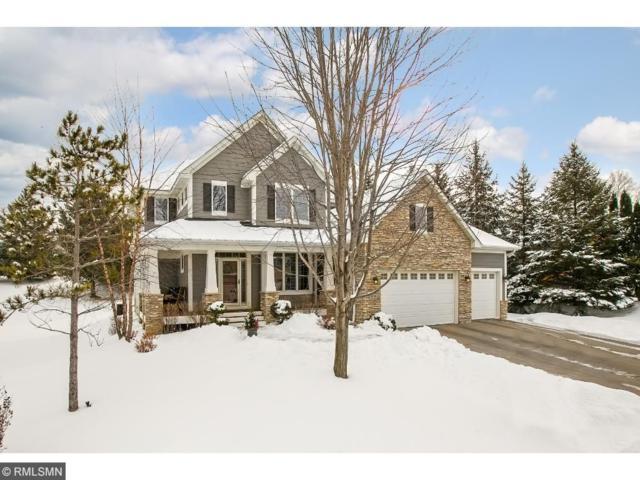 9445 Riley Lake Road, Eden Prairie, MN 55347 (#4910901) :: The Preferred Home Team