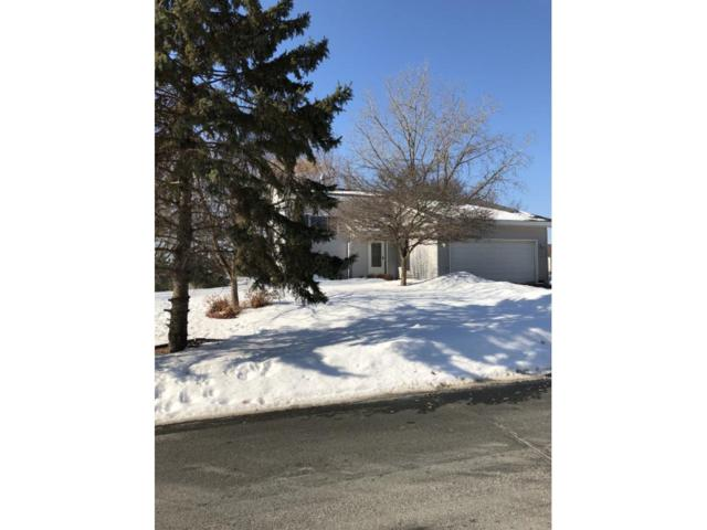12187 Cartway Curve, Eden Prairie, MN 55347 (#4917368) :: Team Winegarden