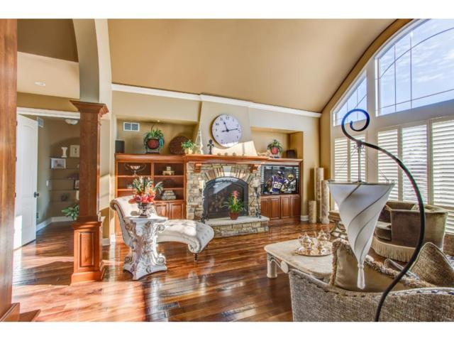 9215 Rich Valley Boulevard, Inver Grove Heights, MN 55077 (#4918964) :: Olsen Real Estate Group