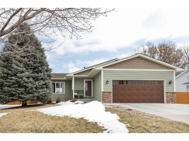 9735 Hames Court S, Cottage Grove, MN 55016 (#4919262) :: Olsen Real Estate Group