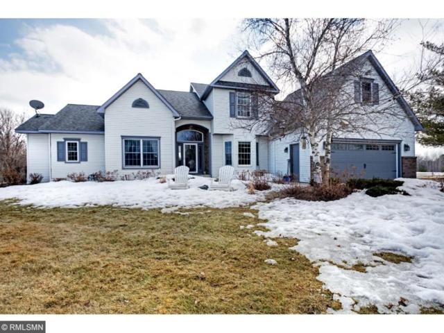 923 Cloverleaf Circle, Hudson, WI 54016 (#4919366) :: Olsen Real Estate Group