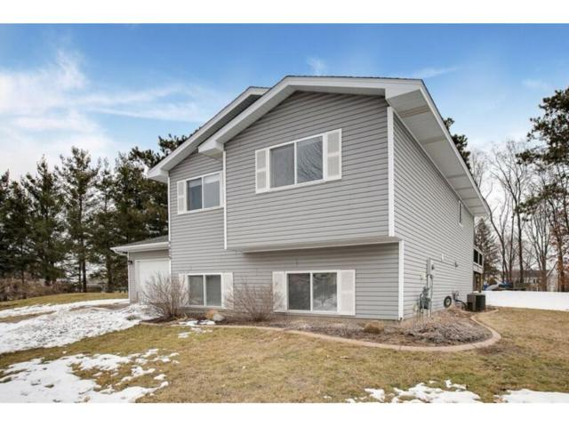 9429 Hames Avenue S, Cottage Grove, MN 55016 (#4919424) :: Olsen Real Estate Group