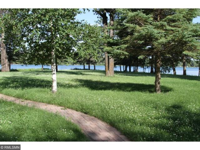 29380 Lilac Road, Collegeville Twp, MN 56374 (#4919806) :: Olsen Real Estate Group
