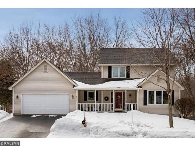 6531 Gray Fox Curve, Chanhassen, MN 55317 (#4919810) :: Olsen Real Estate Group