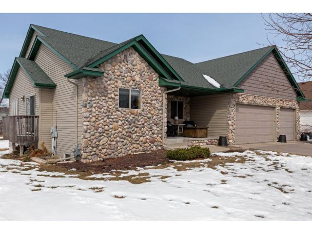 2571 223rd Lane NW, Oak Grove, MN 55011 (#4926059) :: The Snyder Team
