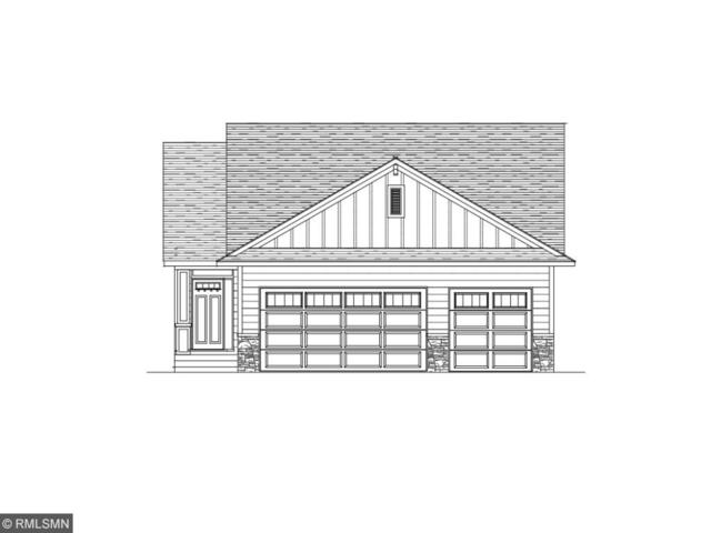 8896 Parkview Circle, Chisago City, MN 55013 (#4936080) :: The Preferred Home Team