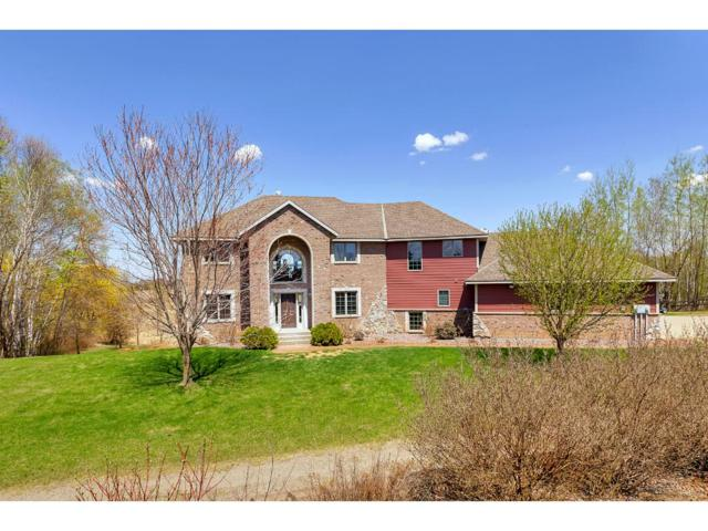 19261 56th Avenue, South Haven, MN 55382 (#4936693) :: The Hergenrother Group North Suburban