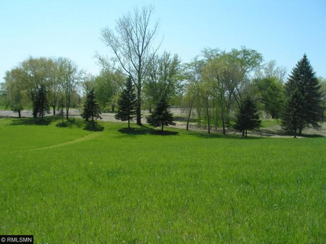 3757 Independence Road, Independence, MN 55359 (#4938167) :: The Preferred Home Team