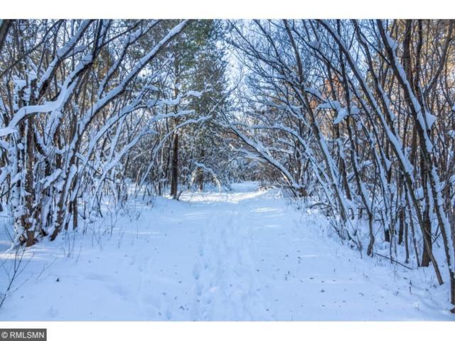 13xx Valley Creek Trail S, Afton, MN 55001 (#4938268) :: The Snyder Team