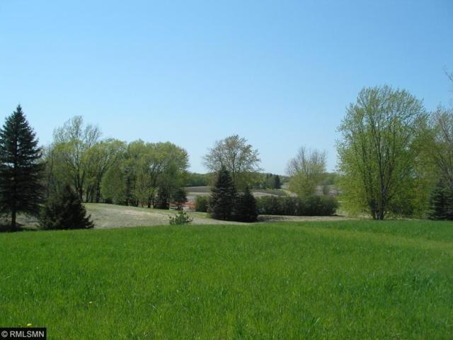 3787 Independence Road, Independence, MN 55359 (#4938397) :: The Preferred Home Team