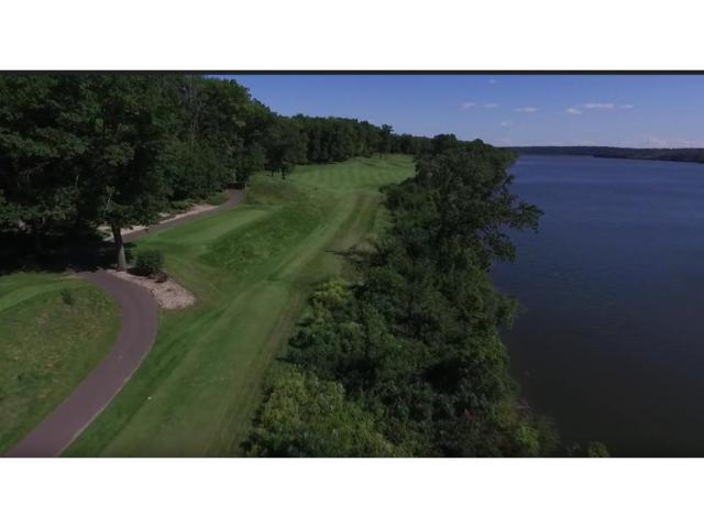 10351 Grey Cloud Trail S, Cottage Grove, MN 55016 (#4940175) :: The Snyder Team