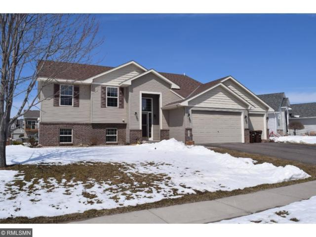 367 Garden Drive, Delano, MN 55328 (#4940631) :: The Preferred Home Team