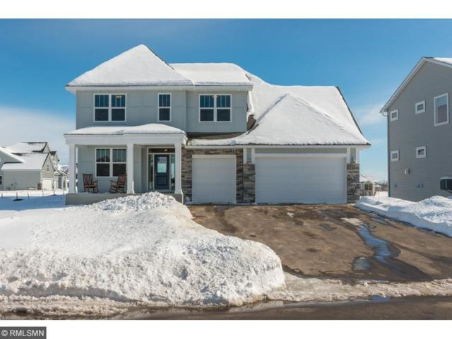 4125 Lady Slipper Road N, Lake Elmo, MN 55042 (#4940869) :: The Snyder Team