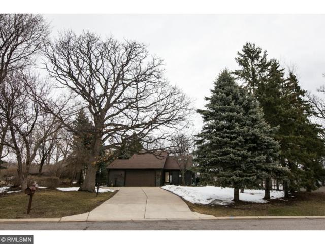 205 Twin Lake Trail, Little Canada, MN 55127 (#4941766) :: The Snyder Team