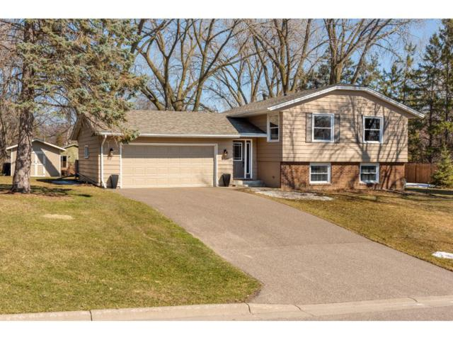 2700 Oakview Lane N, Plymouth, MN 55441 (#4941907) :: The Preferred Home Team