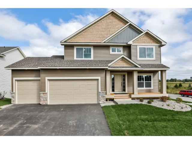 13974 Ashford Path, Rosemount, MN 55068 (#4943151) :: The Preferred Home Team