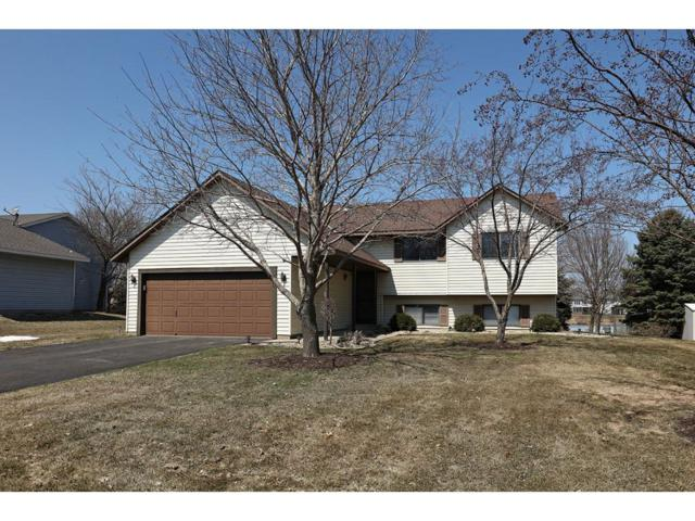 3931 153rd Street W, Rosemount, MN 55068 (#4943557) :: The Preferred Home Team