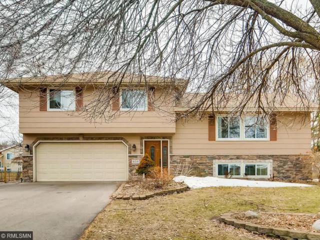 650 96th Lane NE, Blaine, MN 55434 (#4944583) :: The Preferred Home Team