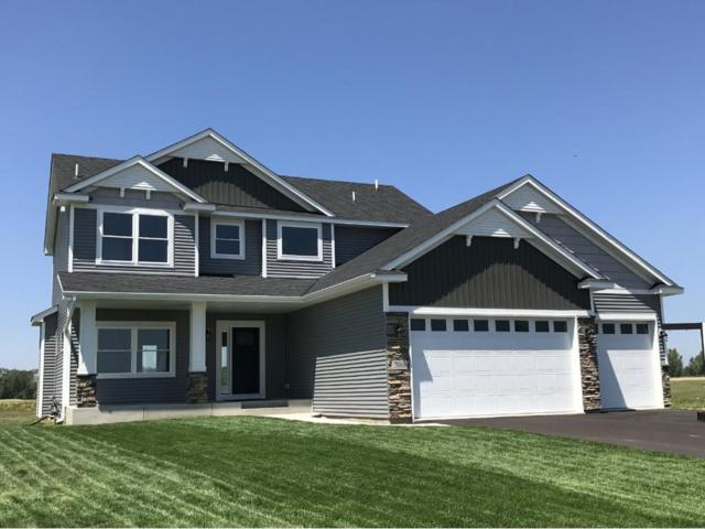 6991 208th Street N, Forest Lake, MN 55025 (#4948214) :: The Hergenrother Group North Suburban