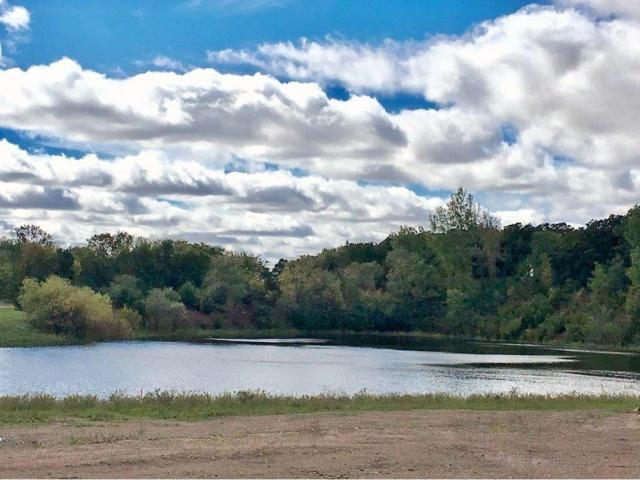 16228 Equestrian Trail, Lakeville, MN 55044 (#4950490) :: The Preferred Home Team