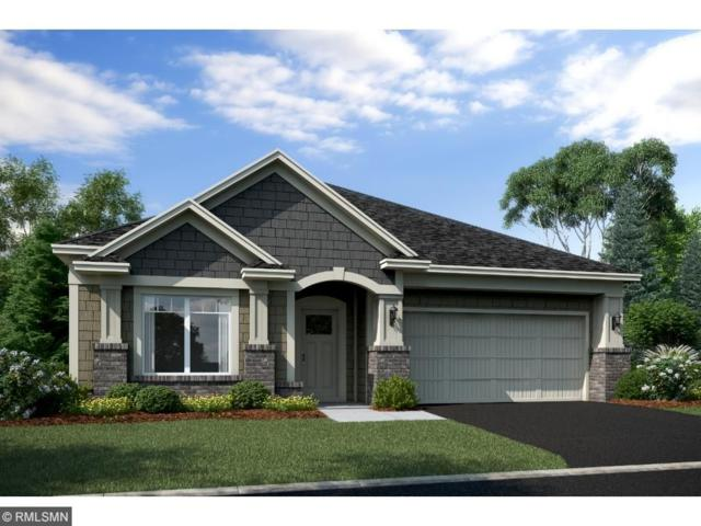 1035 Roselyn Drive, Victoria, MN 55386 (#4950514) :: The Hergenrother Group North Suburban