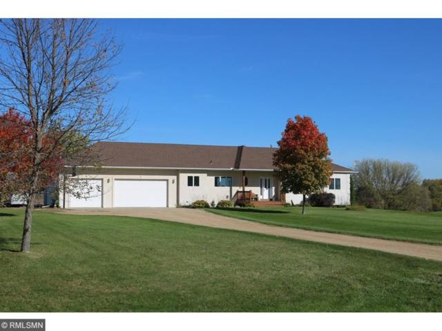 1100 Butterfly Lane, Jordan, MN 55352 (#4950859) :: The Hergenrother Group North Suburban