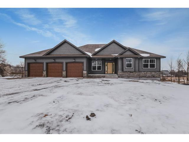 XXXX 242nd Avenue NW, Livonia Twp, MN 55398 (#4951333) :: The Preferred Home Team