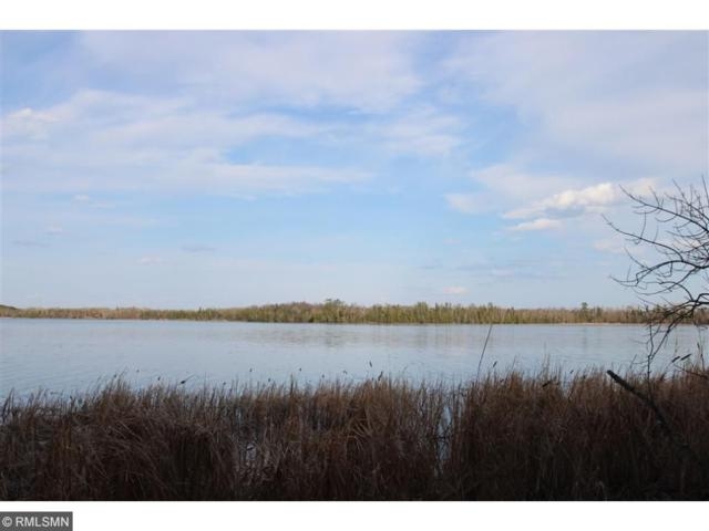 XX Sandy Point Road, Northome, MN 56661 (#4953165) :: The Preferred Home Team