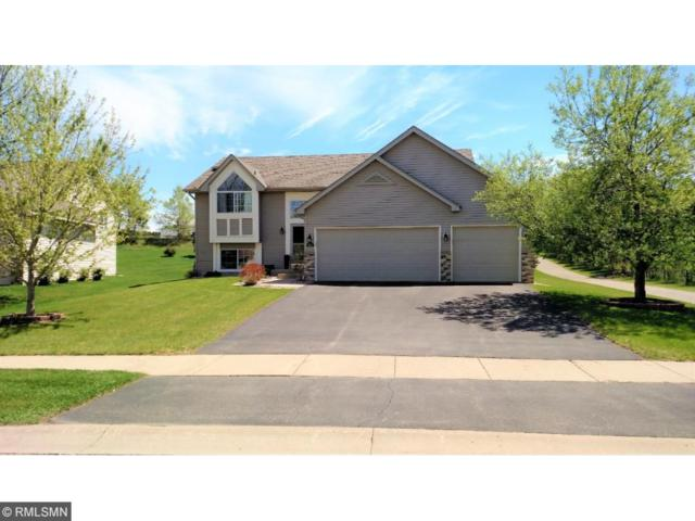 802 Lodge Drive, Jordan, MN 55352 (#4955462) :: The Hergenrother Group North Suburban