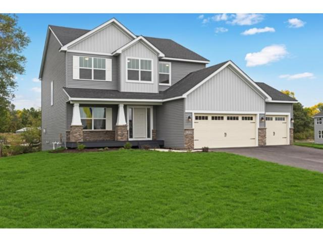 13025 Granstrom Circle, Dayton, MN 55327 (#4956029) :: The Preferred Home Team