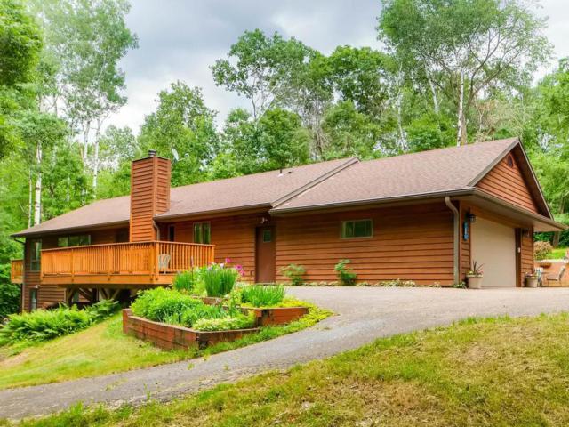 887 Aspen View Circle, Hudson, WI 54016 (#4956741) :: Olsen Real Estate Group