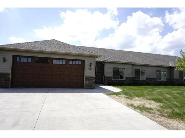 1250 Scout Drive, Sartell, MN 56377 (#4957169) :: Hergenrother Group