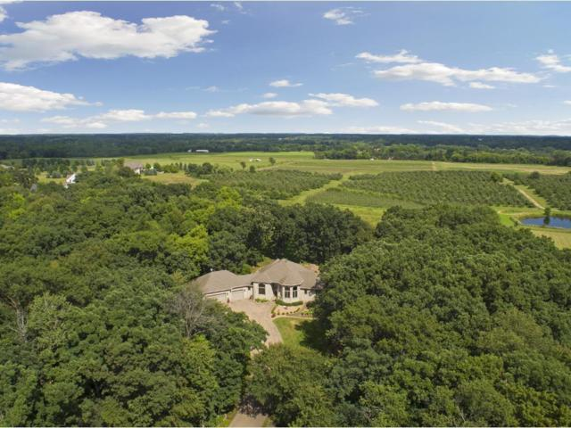 11373 Hillcrest Drive, Grant, MN 55110 (#4957876) :: The Snyder Team