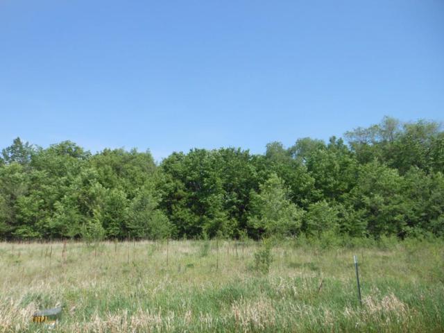 630 Pebble Creek Drive, Saint Cloud, MN 56303 (#4958706) :: The Sarenpa Team
