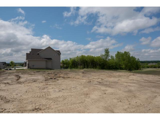 20125 Harness Avenue, Lakeville, MN 55044 (#4958899) :: The Preferred Home Team