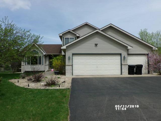 2151 149th Avenue NE, Ham Lake, MN 55304 (#4959239) :: The Preferred Home Team